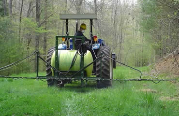 Win The Food Plot Weed Wars