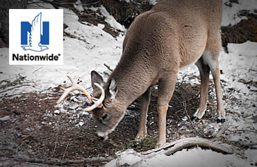 Winter Preparedness for Hunters