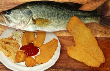 Cajun-fried Largemouth Bass