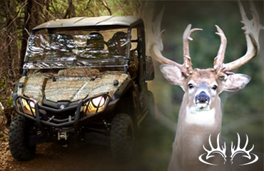 Build Whitetails' Tolerance for ATVs