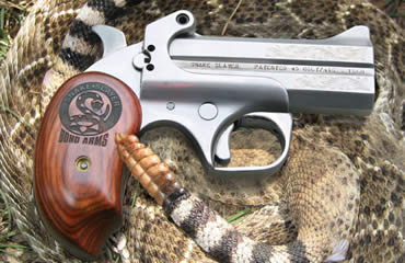 Close-Range Snake Protection