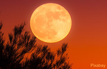 A celestial question: Is it a Harvest or a Hunter's Moon?