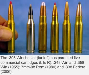 The Unappreciated .260 Remington